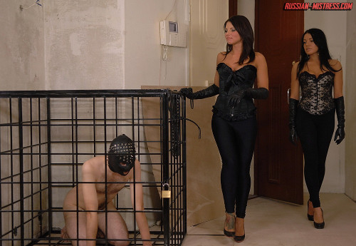 Two mistresses spitting in their slaves mouth in these spitting femdom pictures